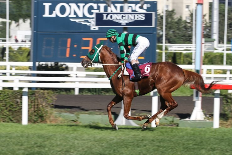 A rider compete in a run in Longines International Racing Festival, Veliefendi racetrack.