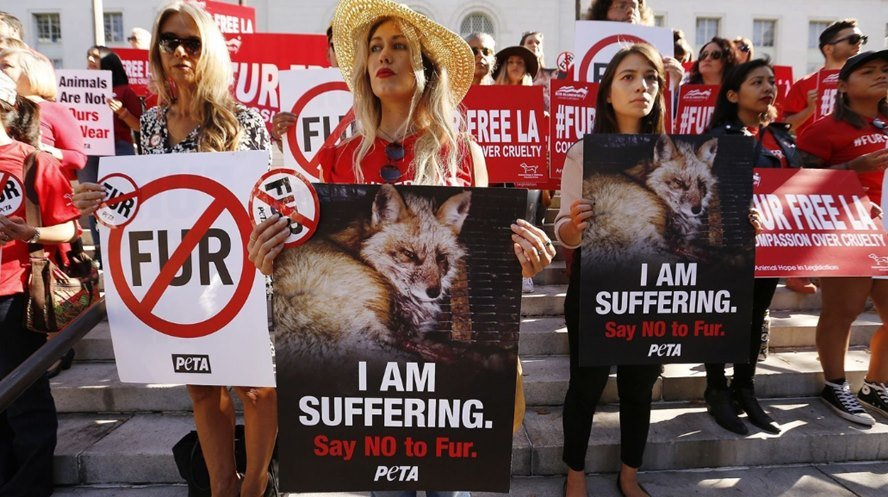 Fur Ban in Los Angeles, USA