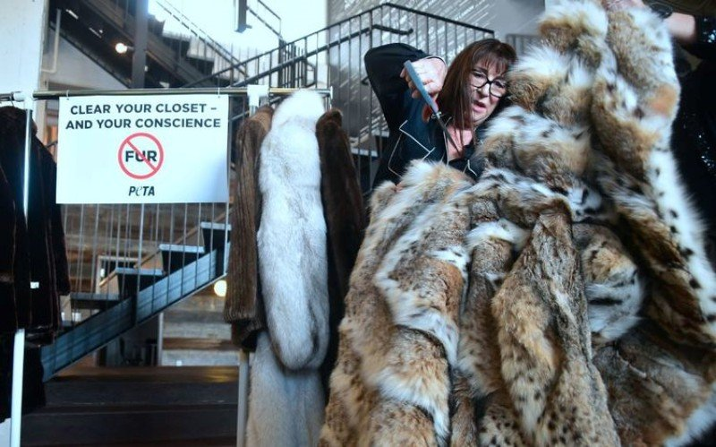 It's No More Fur For Los Angeles 1