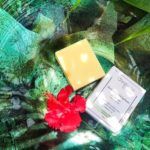 8-of-the-Best-High-End-Shampoo-Bars-Your-Shouldnt-Miss-in-2019-Featured-Image